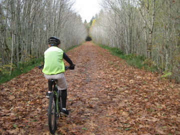 Wednesday Chehalis Western Trail   Canceled